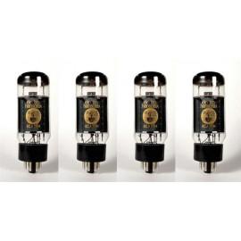 6CA7 EH Quartetto-quad