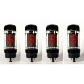 6L6GC EH Quartetto-quad