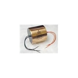 0,1uF - 600V Audio Note SILVER Foil Mylar & Oil