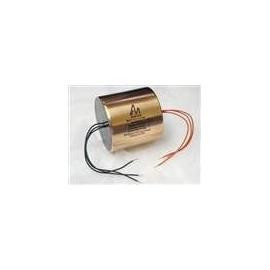 1uF - 600V Audio Note SILVER Foil Mylar & Oil