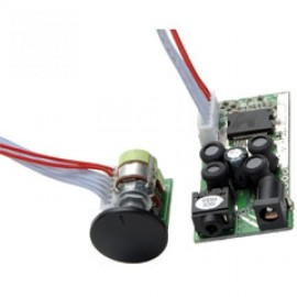 DTA2 T Amp Modulo Dayton