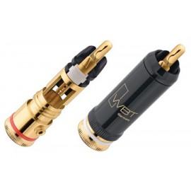 WBT-0102 Cu  RCA plug (4 PIECES)
