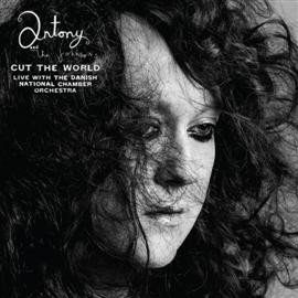 Antony and The Johnsons - CUT THE WORLD (LP doppio)