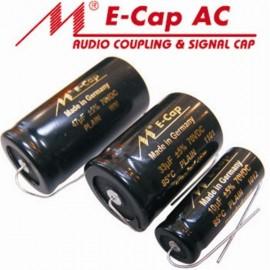 100uF - 100VDC 5% Bipol RAW Mundorf