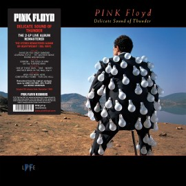 PINK FLOYD - DELICATE SOUND OF THUNDER (2 LP)