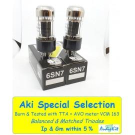6SN7 Electro Harmonix - 5% SPECIAL SELECTION - Pair (v226-v228)
