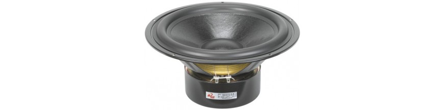 Woofer dual coil