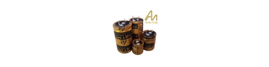 Electrolytics Capacitors